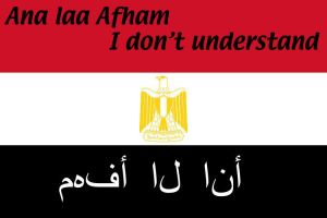Egyptian Flag and Quote by c0ol3st