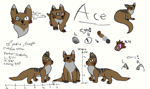 Ace Ref sheet by AwesomePaw