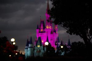 Magic Kingdom at Night by gypsyseabird