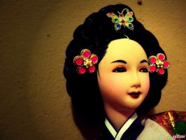 The traditional Korean Lady by obliviouslysin