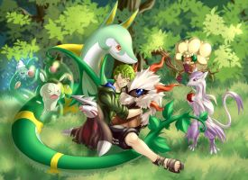 My Pokemon XD