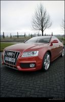 Audi series 5 by AnalyzerCro