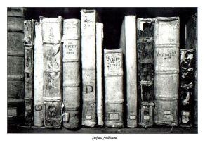 Ancient books by stefano70