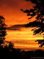 Orange Sunset IV by FriendlyButterfly