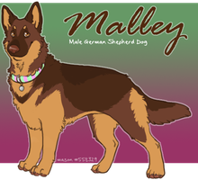 x_. Malley the GSD by srspibble