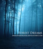 Forest Dreams by AndreeaRosse