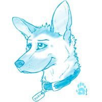 Sketch Challenge - 00 Riley by CanineHybrid