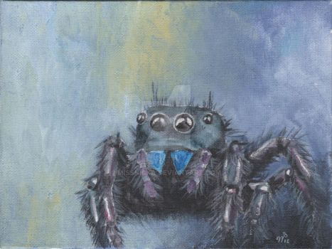 Jumping Spider by MissNicka