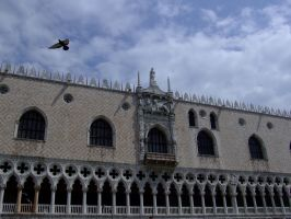 Venice flight by malaga4