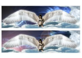 arch angel Jay by 365degrees