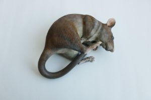 Gambian Pouched Rat Sculpture by philosophyfox