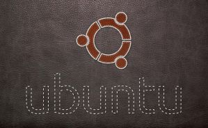 Ubuntu Black Skin by aquils