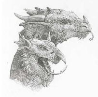 British dragons by Tabon