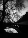 Bridge over troubled waters by allotheist