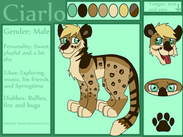 Adopt Try Out- Ciarlo by Rainbow-Moose
