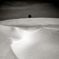 CCXCII. ..Hiver III. by behherit