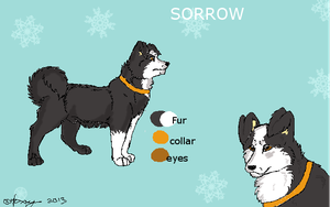 Character sheet: Sorrow by sushisusi