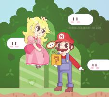 Mario + Peach by carnivalfish