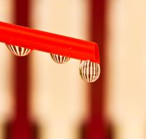 Drip drop by pqphotography