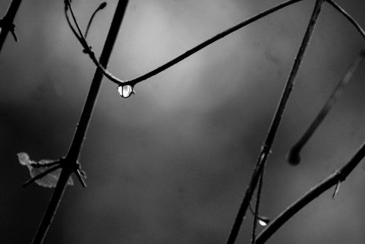 Rain Again Today by Beauty-in-a-Picture