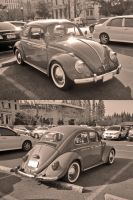 A vintage Bug by zynos958