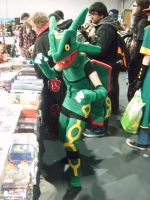 Expo '11 - Rayquaza by AngelBless