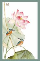 lotus with kingfishers by emmawood