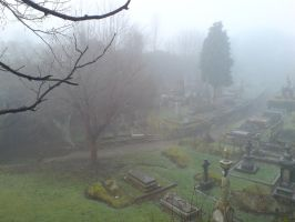 Foggy at the cemetery 17a by rudeturk