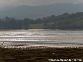 Conwy Nature Reserve by torreoso