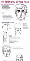 Intro to Anatomy_Face by LoserLunatic