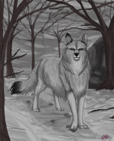 """Werewolf of the Snowy East"" by LadyAlora"