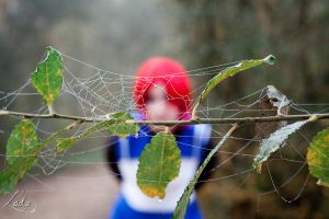 In the spider's web by Erendrym