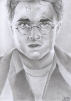 Harry Potter by thekinglion95