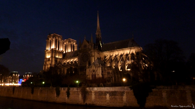 Notre Dame by Tardifice