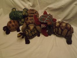 UPDATE: Turtoisapins! (these 6 up for sale) by riverTurtle790