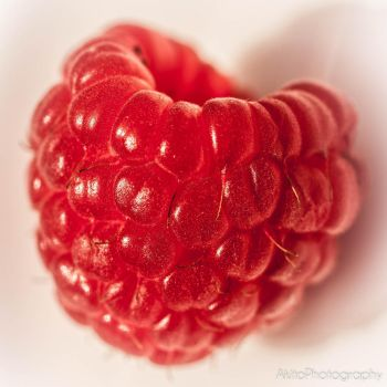 Raspberry by AkitoPhotography