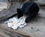 Commission: Elk Bone Runes with pouch by DreamingDragonDesign