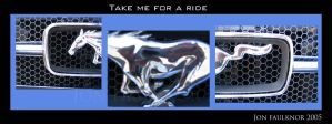 Take Me For A Ride by spinklefinkle