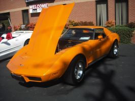 1977 Chevrolet Corvette by Shadow55419