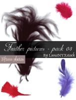 Feather pictures - pack 03 by LunaNYXstock