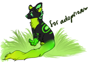 Adopt Please.~ SOLD by P-e-t-a-l