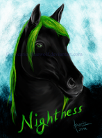 AT - Nightness by ancarie-bluewolf