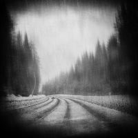 Estonian road by BobRock99