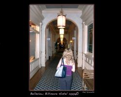 Haunted Belleview Hotel 2006 by andys184