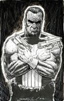 the Punisher by skeel76