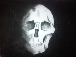 Skull by CathrineMadsen