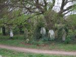 Mill Road Cemetery, Cambridge 004 by shivering23