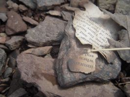 Rocks and Burnt Paper. by xxzimmer483xx