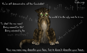 Stormkit's shame by Finchwing