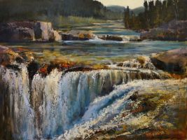 Elbow Falls by artistwilder